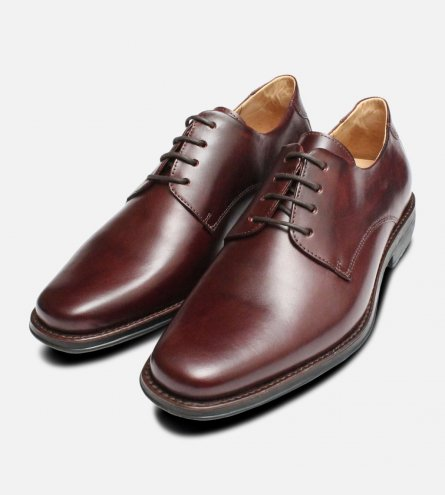 Oxblood Leather Mens Anatomic & Co Lace Up Shoes